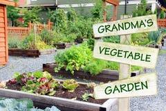 Trädgård för grönsak för mormor` s Royaltyfria Foton