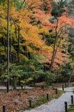 Trädgård för höstlönnlövverk på den Enkoji templet i Kyoto, Japan royaltyfria foton