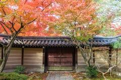 Trädgård för japansk stil i höst Royaltyfria Foton
