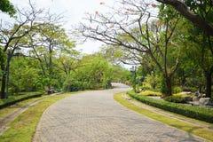 Trädgård för Jocking 001 Royaltyfri Bild