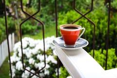 trädgård för kaffekopp arkivbilder