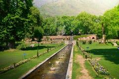 TRÄDGÅRD FÖR NISHAT BAGH, SRINAGAR, INDIA-MAY 2017: Nishat Bagh trädgård i Srinagar, Kashmir, Indien royaltyfria foton