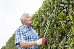 Trädgård för pensionärsnitthäck arkivfoton