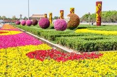 Trädgård för Tiananmen fyrkant fotografering för bildbyråer