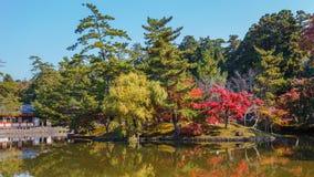 Trädgård framme av den Todaiji templet i Nara Royaltyfri Foto