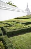 Trädgård framme av Wat Phra Kaew i Thailand Arkivfoto