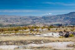 Trädgård i berg, Cappadocia Arkivbilder