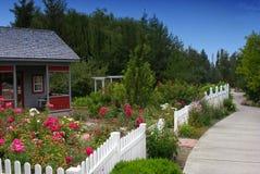 Trädgård i huset Arkivfoto