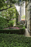 Trädgård i i stadens centrum Montreal Royaltyfria Bilder
