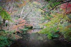 Trädgård i Japan Royaltyfri Bild