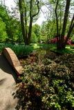 Trädgård i Keukenhof, Nederländerna Arkivbilder