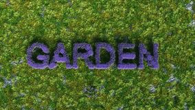Trädgård i lilor Arkivfoton