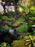 Trädgård i naturen Arkivfoto