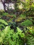 Trädgård i naturen Royaltyfria Bilder