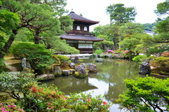 Trädgård i templet Arkivbild