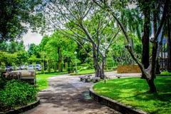 Trädgård i Thailand Chatuchak 37 Arkivbilder