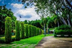 Trädgård i Thailand Chatuchak 44 Arkivbild