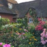 Trädgård med blommor Royaltyfri Foto