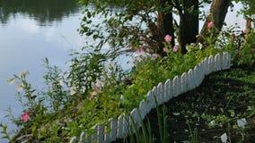 Trädgård med blommor på kusten lager videofilmer