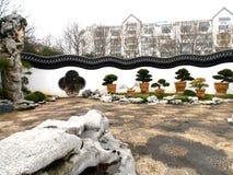 Trädgård med bonsaiträd Arkivfoto
