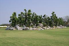 Trädgård med gräs på bakgrund för blå himmel Royaltyfria Bilder