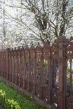 Trädgård med järnstaketet royaltyfri bild
