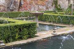 Trädgård med vatten arkivfoto