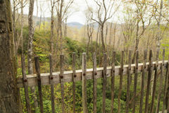 Trädgård Mountain View Royaltyfri Fotografi