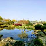 Trädgård och att parkera med sjön arkivbild