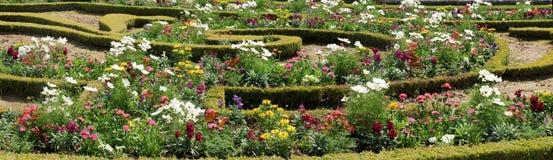 Trädgård och blommor av Versailles - Paris. Frankrike Royaltyfria Bilder
