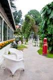 Trädgård och Walkway Royaltyfria Bilder