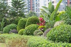 Trädgård på den bostads- lägenheten arkivbilder