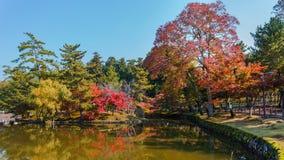 Trädgård på den Todaiji templet i Nara Royaltyfri Foto