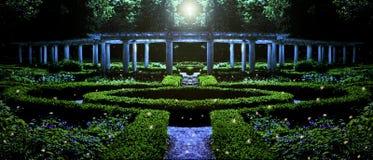 Trädgård på natten royaltyfria foton