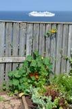 Trädgård på shorelinen av Heligoland fotografering för bildbyråer