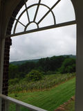 Trädgård till och med fönster Arkivbilder