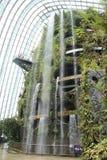 Trädgård vid fjärden Arkivfoto