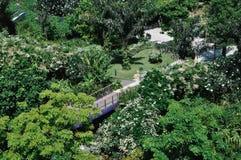 Trädgård vid fjärden Royaltyfria Foton