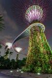 Trädgård vid fjärden Singapore Arkivbild