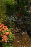 trädgårdar Royaltyfri Foto