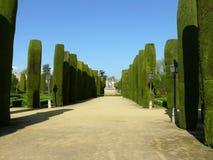 Trädgårdar av alcazaren i Cordoba fotografering för bildbyråer