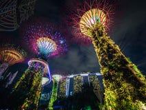 Trädgårdar av fjärden och Marina Bay Sands Hotel Fotografering för Bildbyråer
