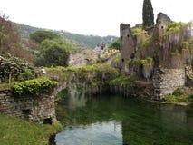 Trädgårdar av Ninfa - fördärva på vattnet Fotografering för Bildbyråer