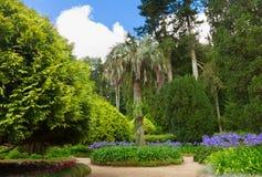 Trädgårdar av Pena, SIntra, Portugal Royaltyfri Fotografi