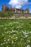 trädgårdar för aberdourslottfife Arkivbilder