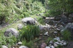 Trädgårdar för för Trauttmansdorff slottMerano Italien blommor och orkidér Arkivfoto