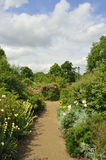 Trädgårdar Hyde Park Fotografering för Bildbyråer