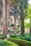 Trädgårdar i Alhambra Arkivfoton