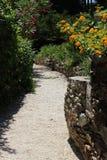 Trädgårdar i Hyéres Arkivbild