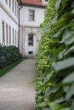 Trädgårdar i Prague Arkivbild
